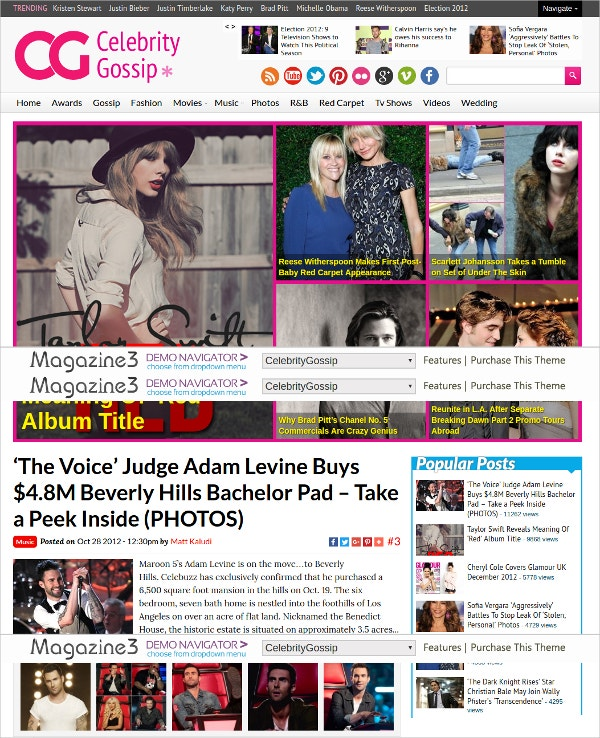 Celebrity Gossip WordPress Blog Theme $59