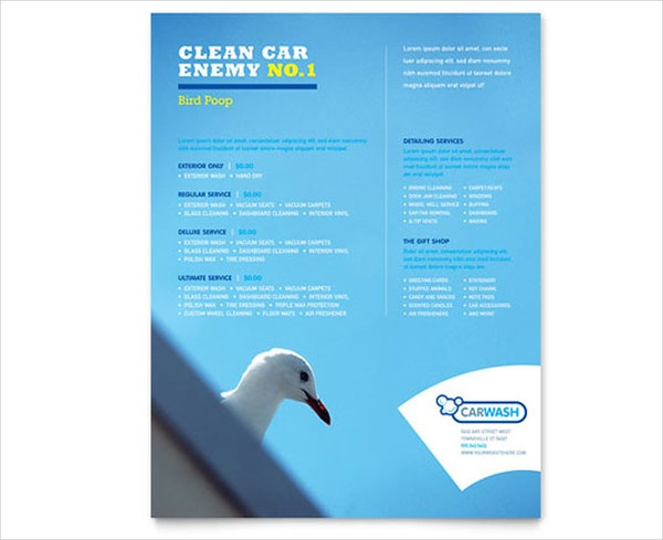 Car Cleaning ServiceFlyer
