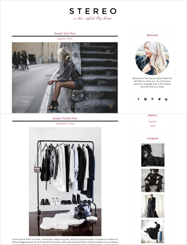 stylish responsive wordpress theme2