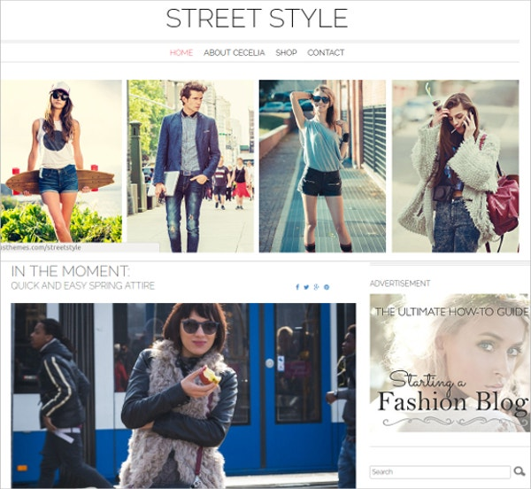 street stylish wordpress theme3