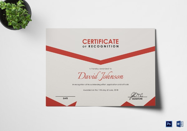 boxing certificate award template