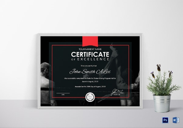 premium certificate of boxing