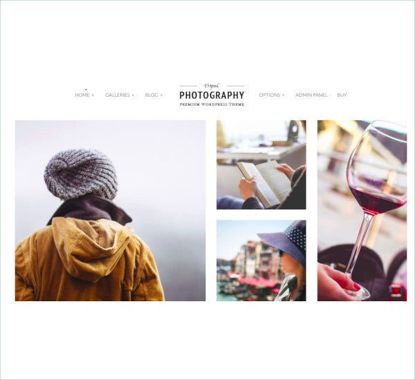 professional wordpress photography theme