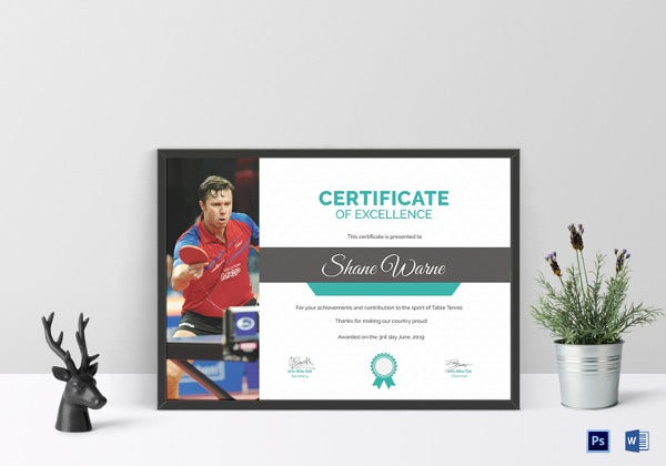 table-tennis-excellence-certificate