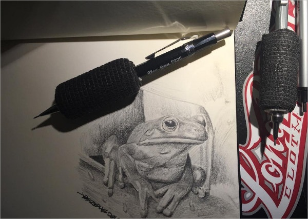 funny frog pencil drawing