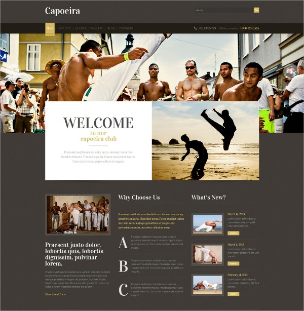 Martial Arts Responsive WordPress Theme