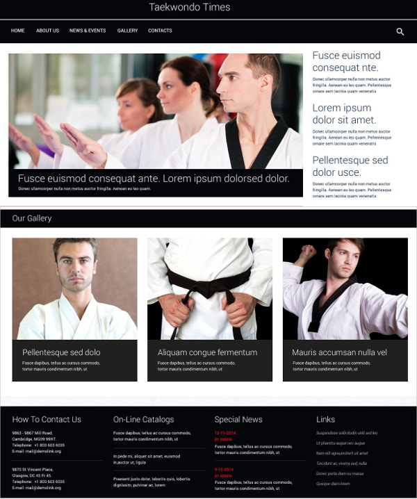 Black Belt Martial Arts WordPress Theme $75