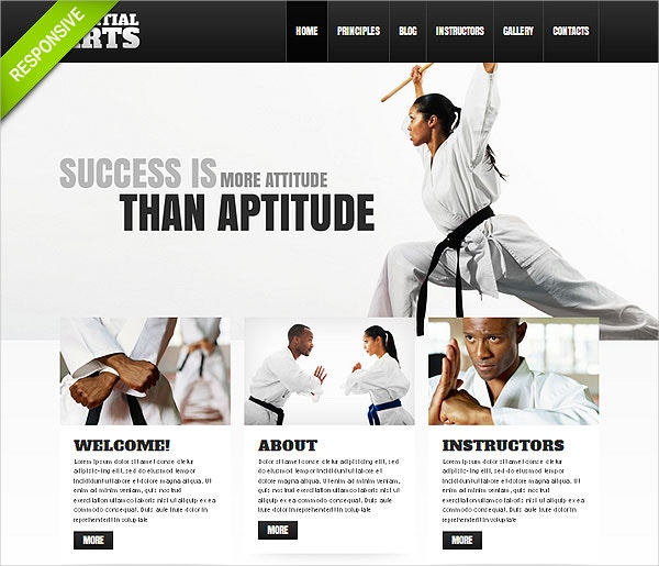 Sport Martial Art WordPress Theme