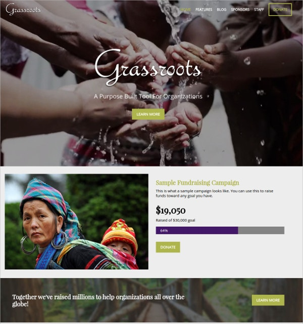 Non Profit Campaign WP Website Theme $59