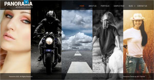 responsive model agency wordpress theme