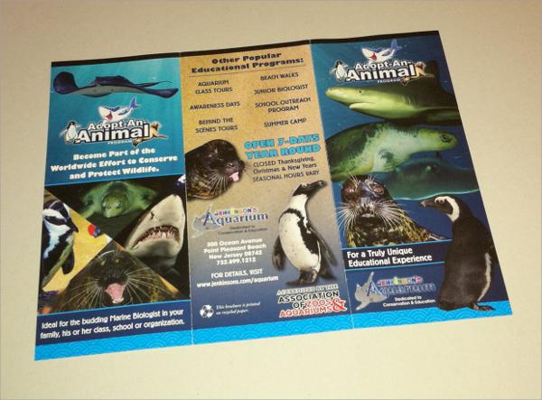 Trifold Aquarium Brochure