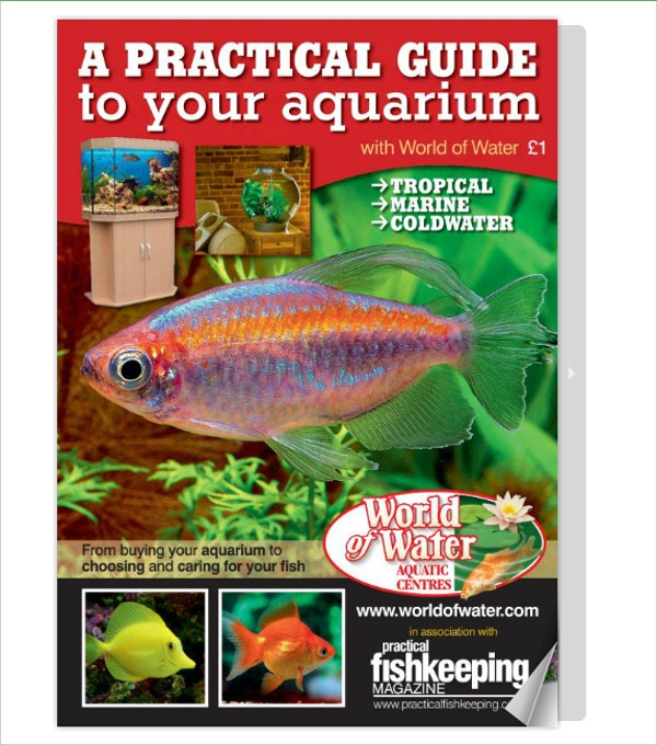 World of Water Aquarium Brochure