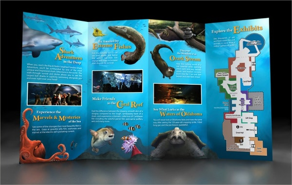 Elegant Aquarium Brochure Templates