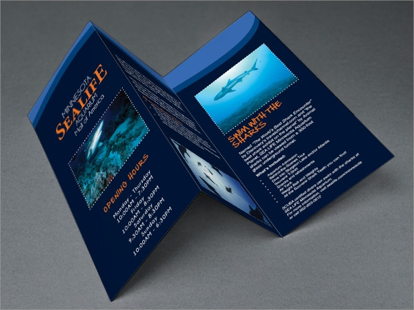 Aquarium Museum Brochure Template