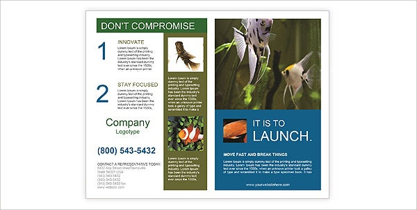 Colorful Aquarium Brochure Template
