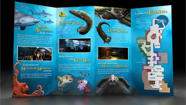 aquariumbrochuretemplates