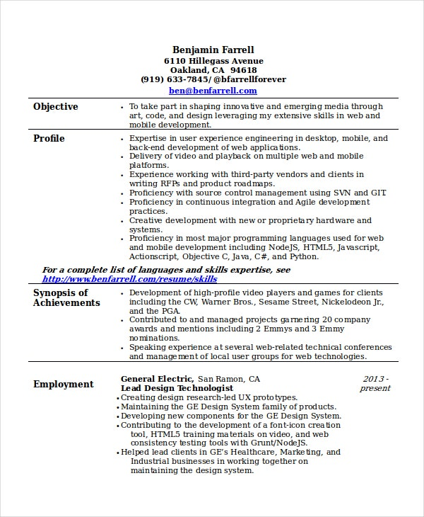 interactive developer resume