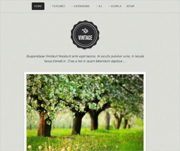 Vintage Responsive Joomla Website Theme