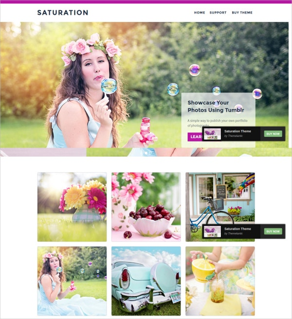 Stylish Floral Tumblr Theme $19