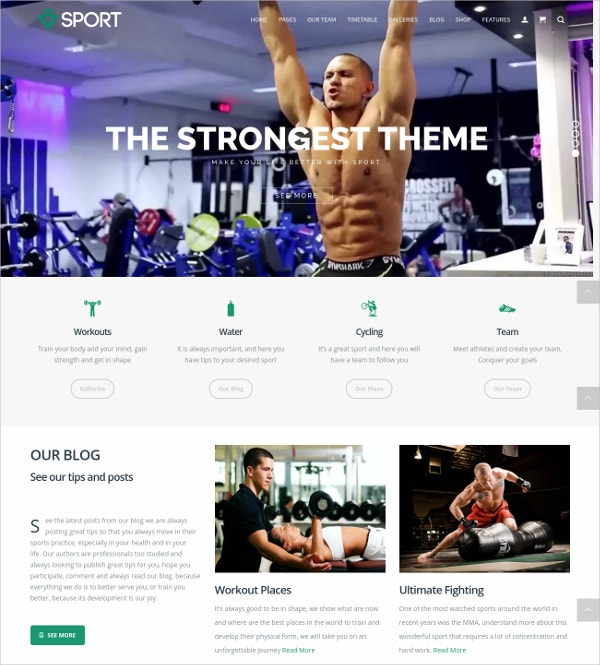 Responsive Minimal Sports WordPress Theme $49