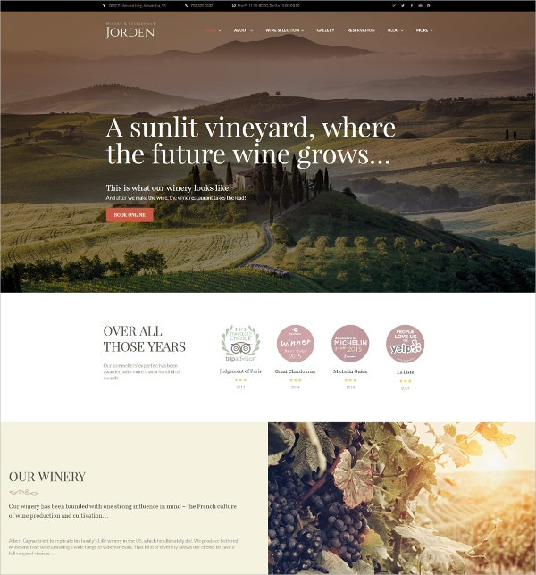 Premium Wine Growth WordPress Theme $75