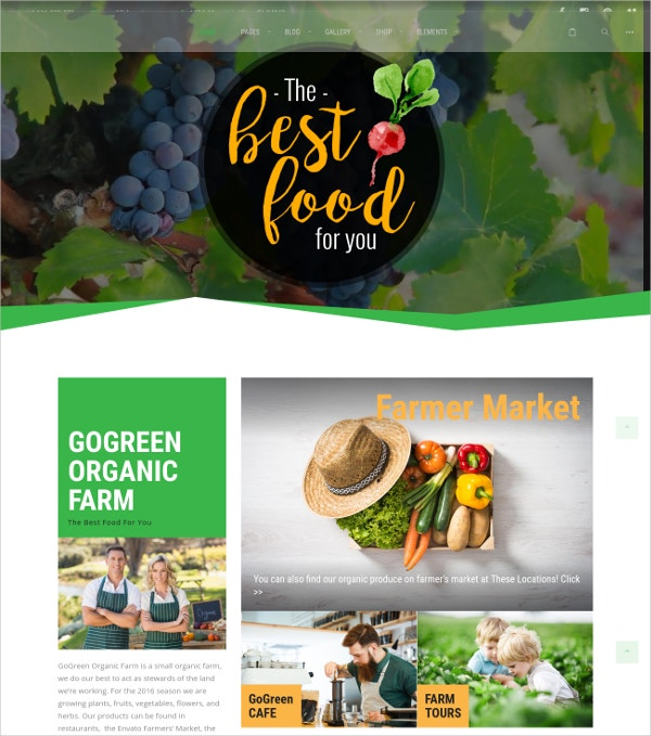 Organic Food WordPress Theme $59
