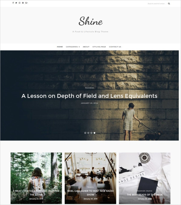 Simple & Minimal WordPress Blog Theme $39