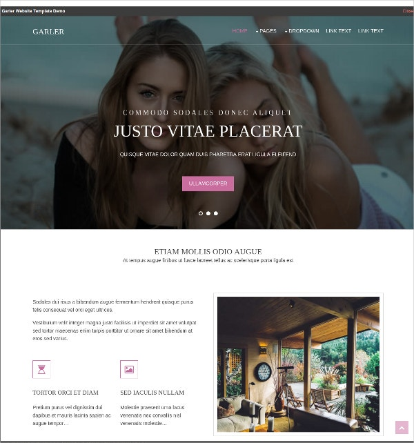 free photography website theme