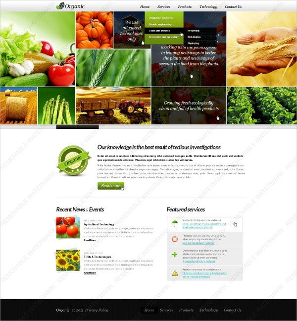 Organic Agriculture Website Theme