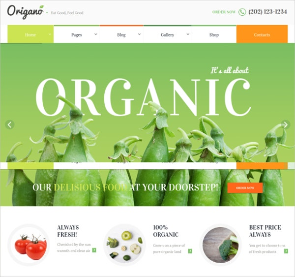 Modern Organic Healthy Food Responsive Mobile Website Template