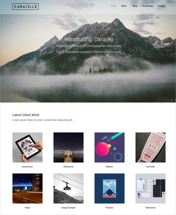 art photography gallery blog website theme