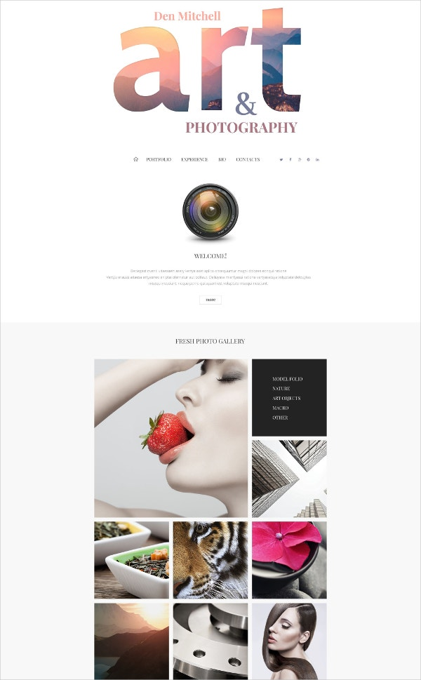 Professional Art Professional Photographer Gallery Joomla Website Template