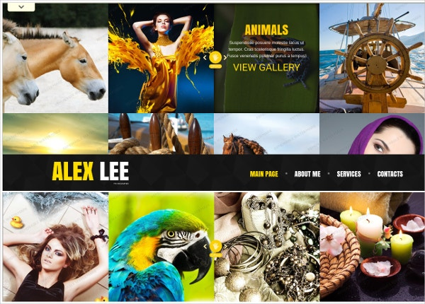 Popular Art Photography Website Theme
