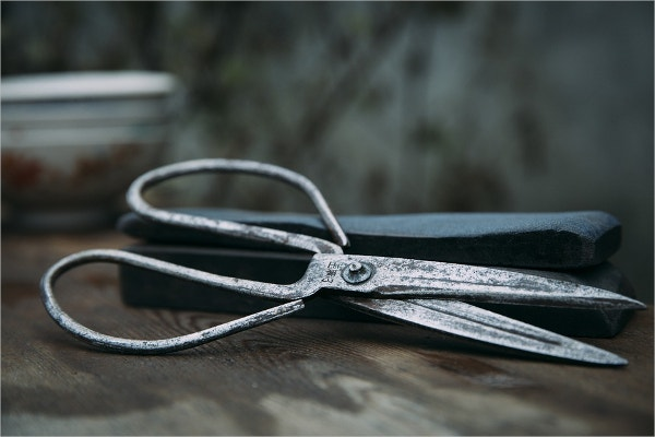 Scissor Still Life Photography