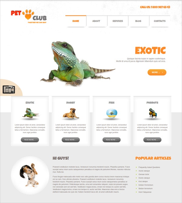 minimalist animals joomla club theme