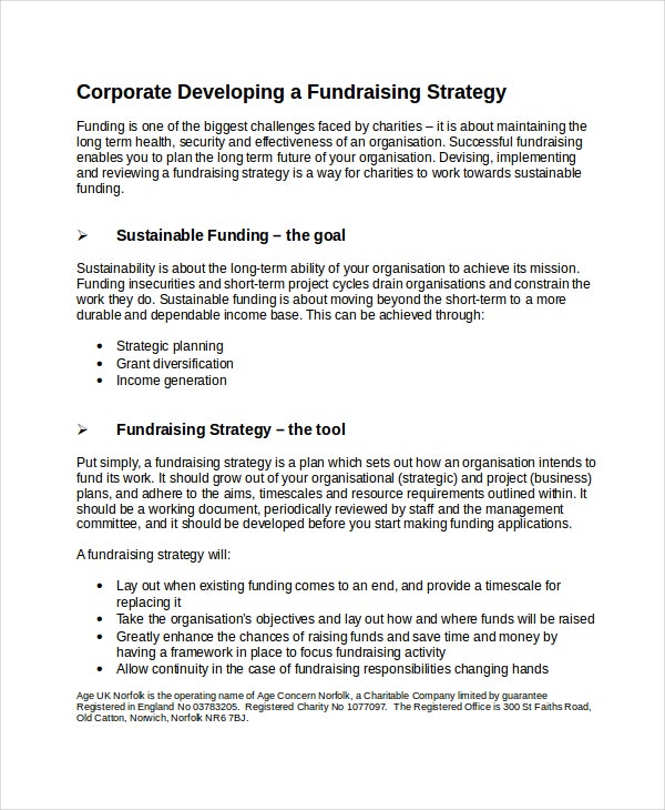 Fundraising Strategy Template Free Word PDF Document - Charity business plan template