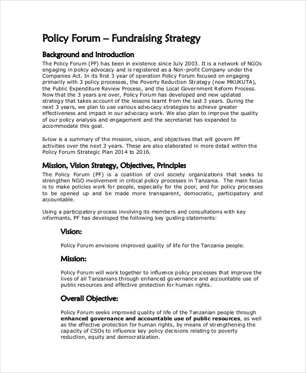Fundraising Strategy Template   Free Word Pdf Document Downloads