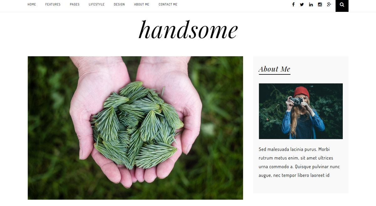 Minimal Personal Blogging WordPress Theme $39