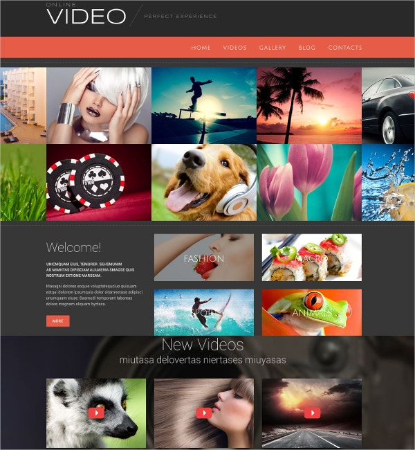 Online Video Blog WordPress Theme $75