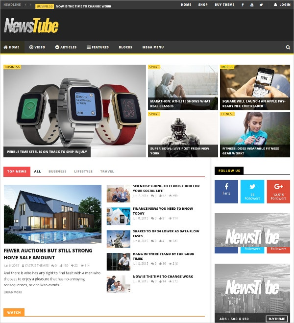 Magazine Blog & Video WP Theme $59