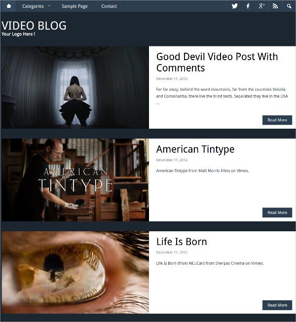Professional & Personal WordPress Video Blog Theme $69