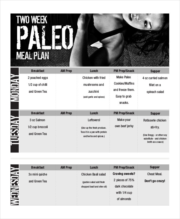 Weekly meal planner 10 free pdf psd documents download for Two week meal plan template