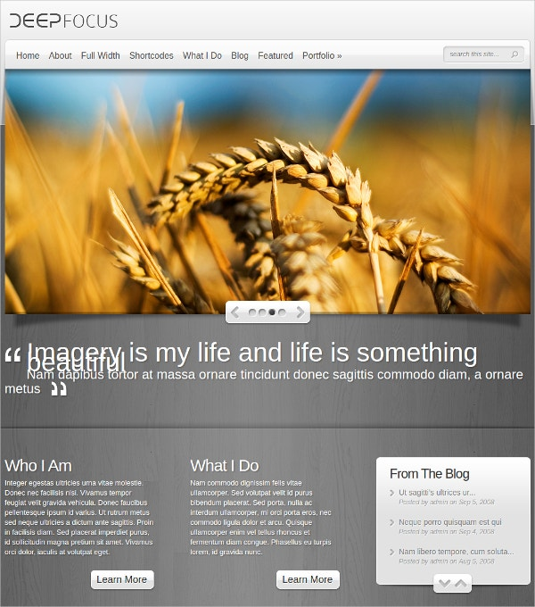 artist photography blog wordpress theme