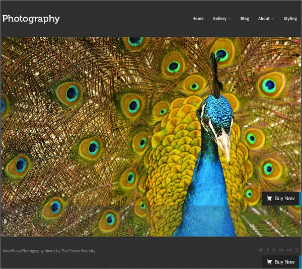 beautiful photography blog wordpress theme