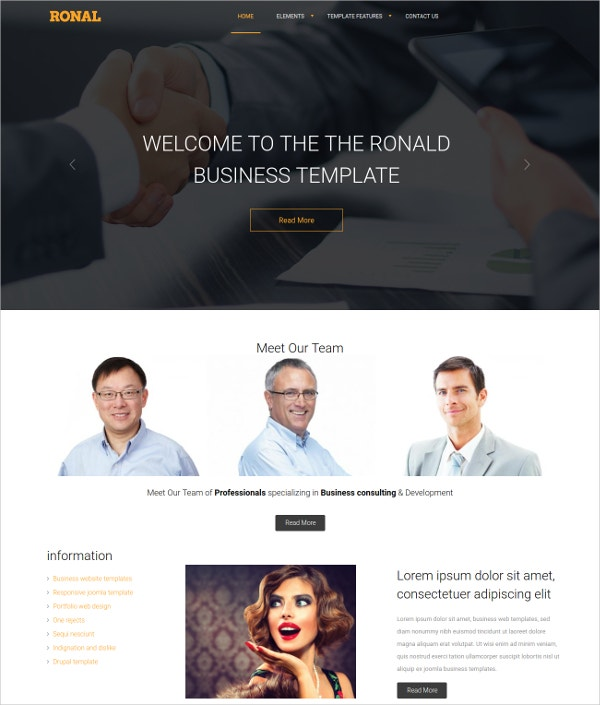 Drupal Website Design Theme $59