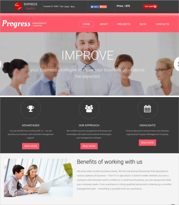 Management Responsive Drupal Website Template