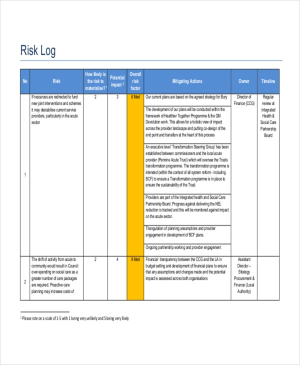 bcf risk log template