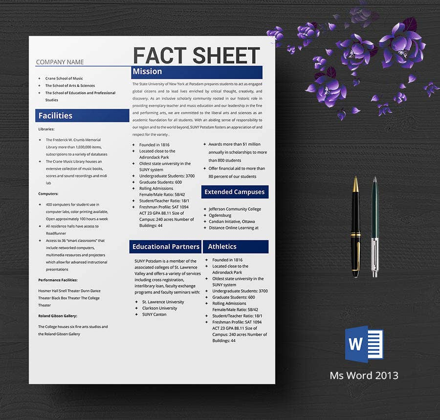 Free Fact Sheet Templates  CityEsporaCo