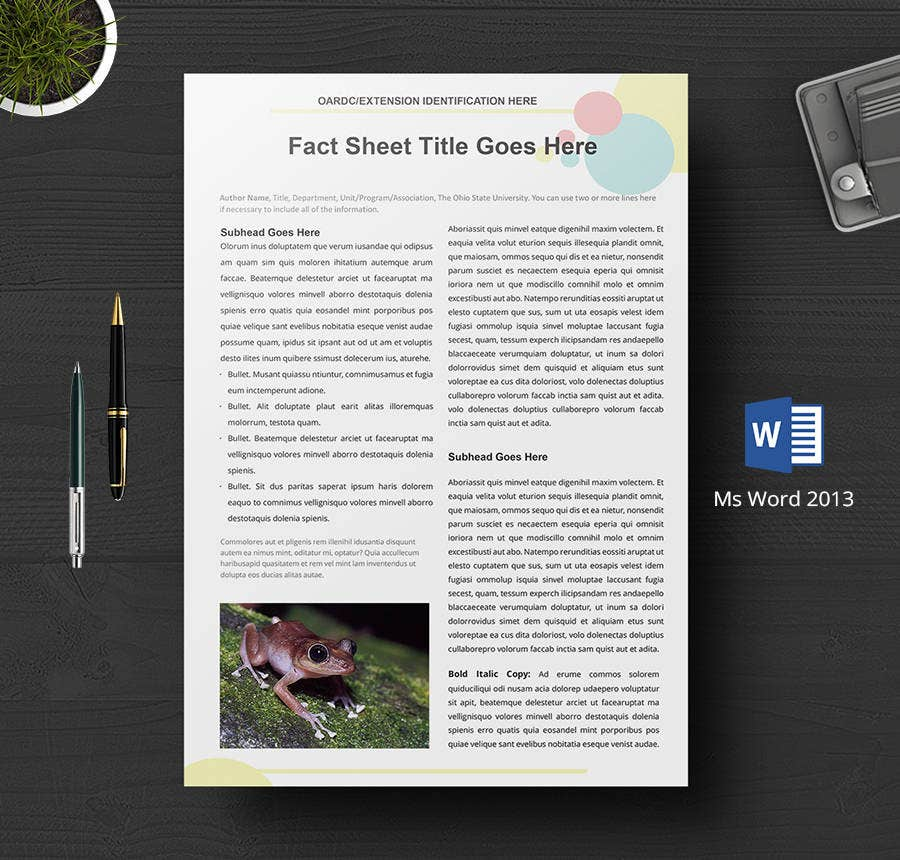 Free Fact Sheet Templates  Survey Campaign  Free  Premium