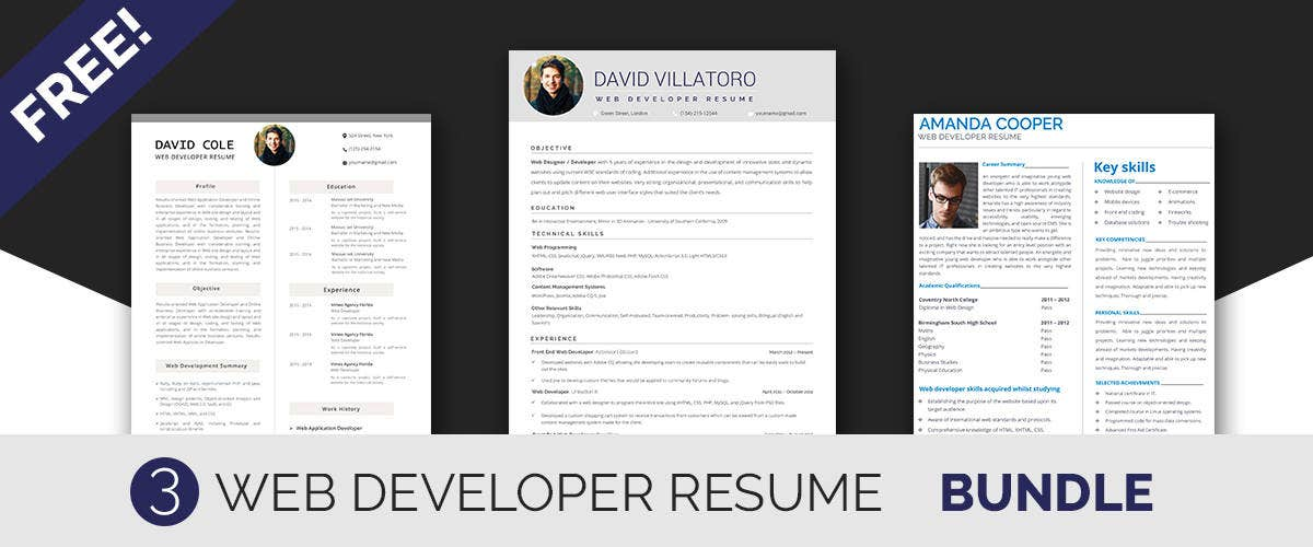 Developer Resume Templates